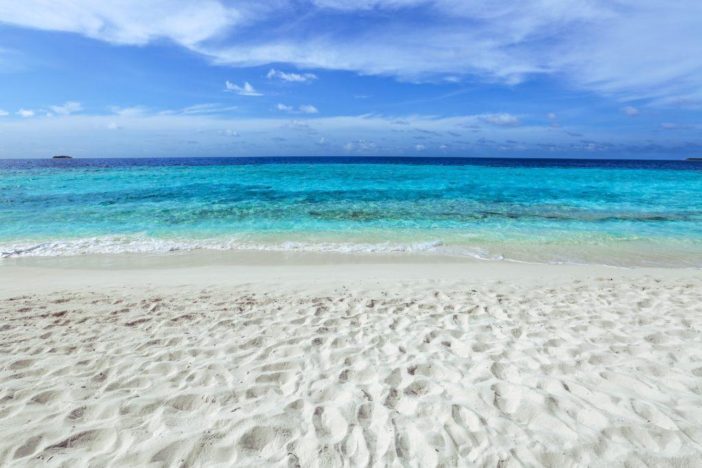 Erosion prevention and beach restoration shoreline