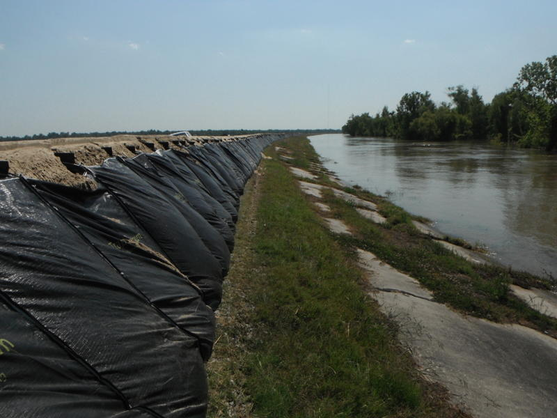 Large levee system made with TrapBags
